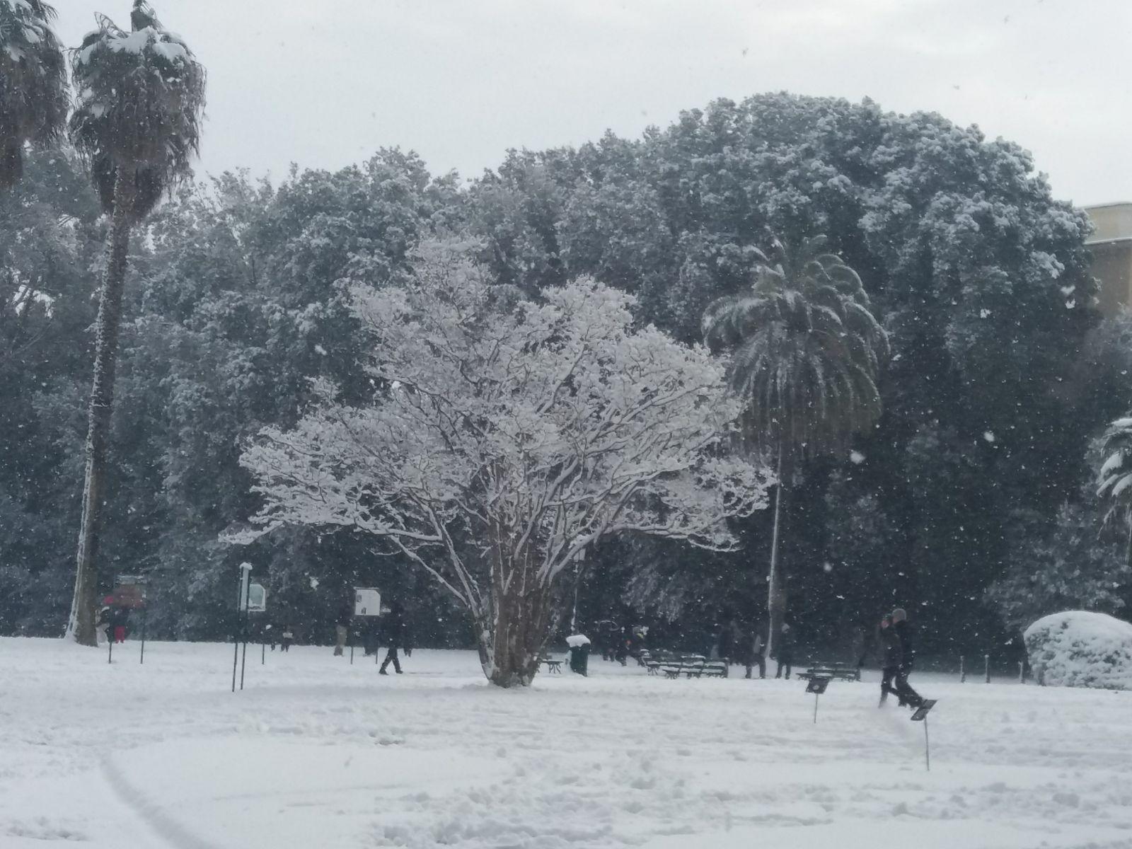 Campania, allerta neve