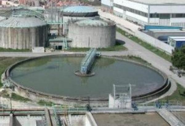 Depurazione delle acque, troppe interferenze – di Michele Buscè