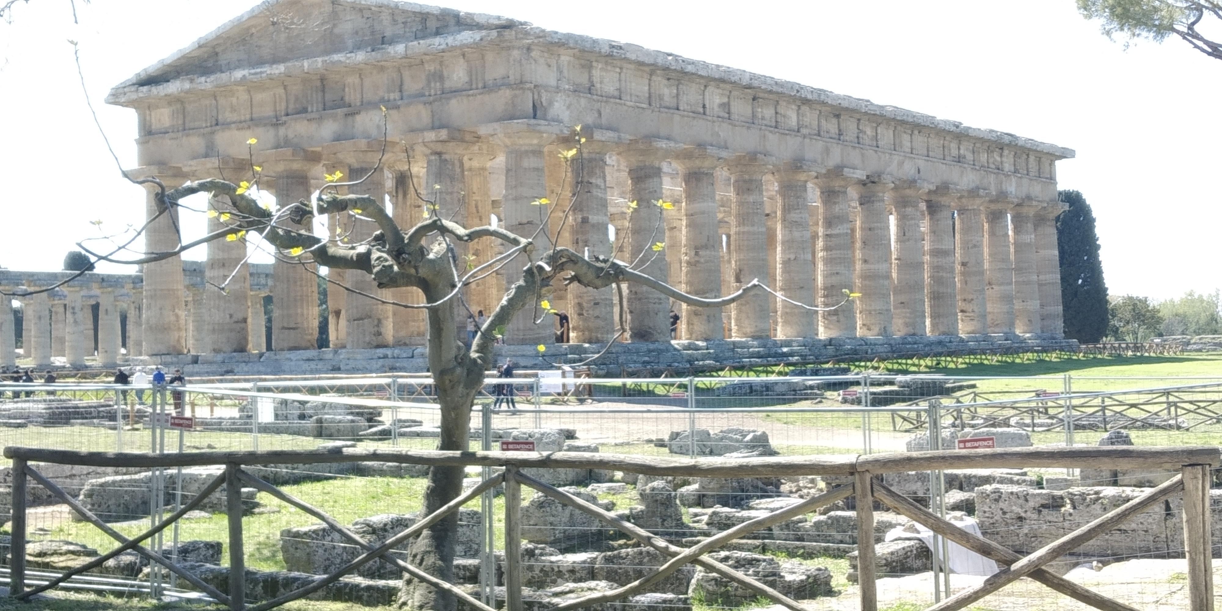 Paestum: i templi a buio per salvare la terra